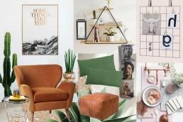 interior trend plant