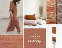 Sherwin-Williams Color of the Year 2019 Inspiration - SampleBoard Blog